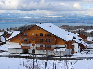 Brand new duplex apartment on the slopes, Thollon-les-Memises