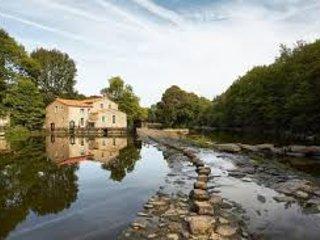 Gite de la vigne, Mortagne-sur-Sevre