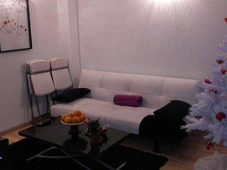 studio mezzanine 23m2 dans maison indépendante proche CDG