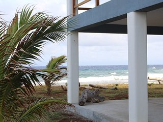 New in 2015 - Oceanfront Studio Apartment - Walk Out Diving & Snorkeling
