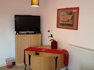 Fabulous 1 bed flat near Euston / Kings Cross Central London! WiFi.