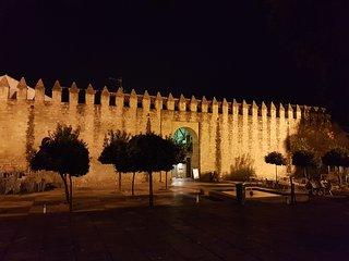Apartamento junto a la Mezquita, Córdoba