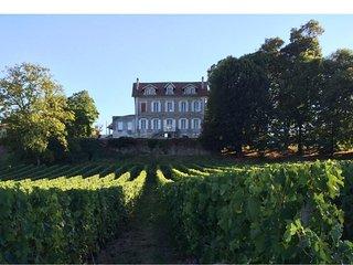 Chambre St Emilion au Chateau La Fontaine,cadre exceptionnel au coeur des vignes