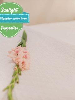 Egyptian cotton linen