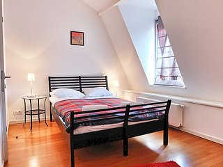 Apartment in Brussels with Internet (457216)