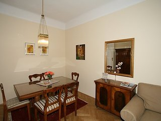 Apartment 130 m from the center of Vienna with Internet (30577)