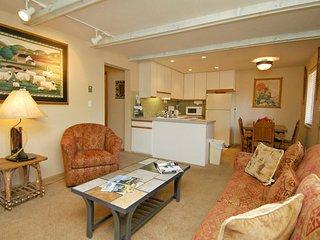 Silverglo Condominiums Unit 202, Aspen