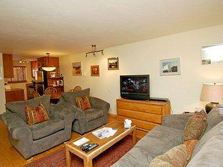 Silverglo Condominiums Unit 204, Aspen