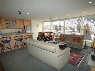 Durant Condominiums Unit A301, Aspen