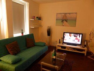 Grosse sonnige Wohnung Nahe Zentrum, free WiFi