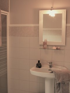 Family bathroom with tub, shower, sink and toilet