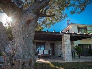 Bouganvillia Villa Nissi View