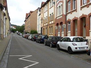 Große sonnige Wohnung Nähe Zentrum, free WiFi