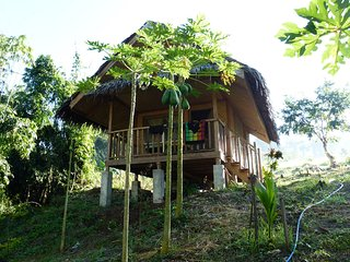 Lovely Tropical Guesthouse