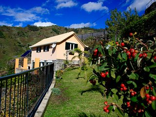 Quinta Terezinha - Panoramic sea and mountain view, gardens, barbecue, wifi, Ribeira Brava