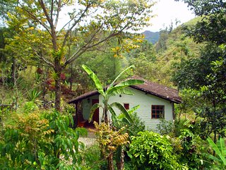 The Hummingbird Suite - Vilcabamba