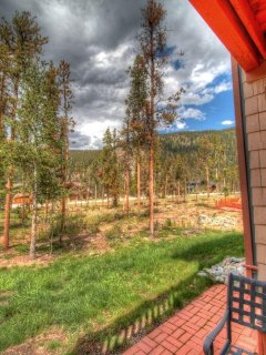Private Patio View - Ponder the amazing beauty among towering pine trees from your private patio.
