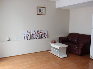 Clean, cozy, private 1 bedroom suite with kitchen, bathroom and ensuite laundry, Surrey