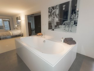 Luxery  Apartment in South Amsterdam nearby RAI