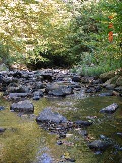 View of Mill Run Creek