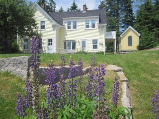 LUPINE LEDGE - Stonington