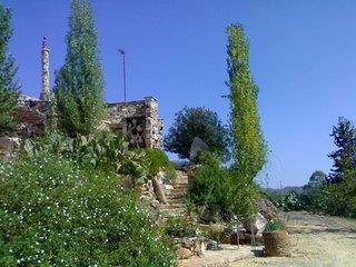 XALASMATA  ORGANIC  HOUSE