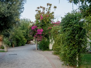 HORSE RIDING VILLA IPPIKOS