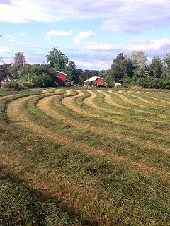 Farm country.