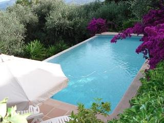 Beautiful private pool and gardens .