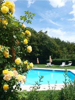 Kerschbamerhof mit Panoramablick, grossem Pool, Tiere, Weinkeller,Spielplatz,...