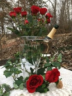 Enjoy a Special Valentines Break by the beautiful Spring River. Check our website for details.
