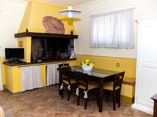 fireplace in the living room - kitchen