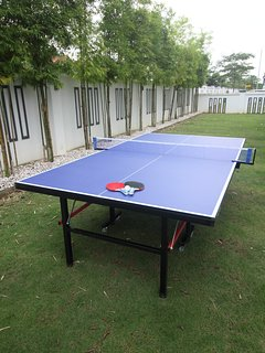 Ping Pong in the Garden