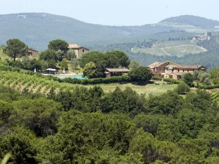 Delizioso Appartamento sulle colline Senesi con ampia piscina