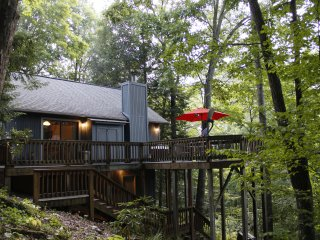 Parkers Nest Smoky Mountain Hideaway - Cozy, Clean, WiFi, Central Air/Heat