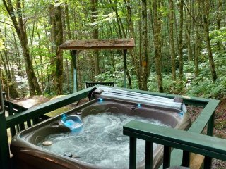 Dragonfly Cabin - Real Log Interior and Mountain Seclusion - A Waterfall Is Just