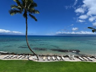Kaleialoha 402 Whales are here! Ocean Front Resort. Location,Location!