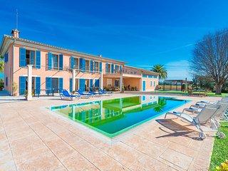 QUEEN BLANQUERA  - Villa for 12 people in SA POBLA, Sa Pobla