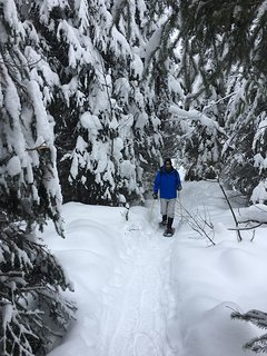 snowshoeing from the condo - photo given to us by guest (posted with permission)