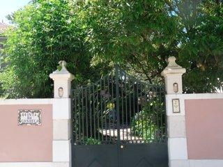 Quinta da Condeca (Casa Verde) + Swimming pool 18x6m