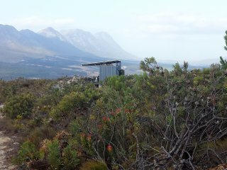 The Square Elephant in Private Mtn Nature Reserve, Hermanus