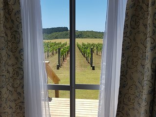 Kerikeri - Vineyard Paradise Cottage -  Self-Catering