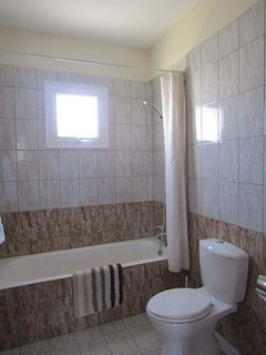Main bathroom with bathtub and over shower