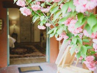 Rustic, Boutique, Honeymoon Cottagette, Albuquerque