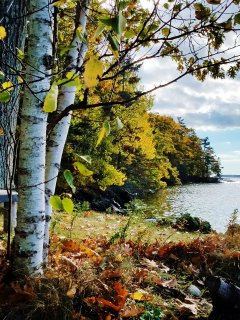 View from the sunroom across the front lawn toward Paradise Point in Fall