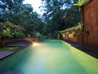 3 Bedroom Private Pool Villa 10 minute to Ubud
