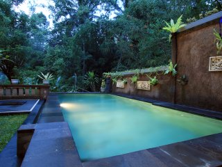 Ubud Best Place to stay#3bedr private Pool with jungle view