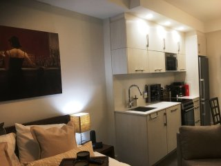 Downtown Laurier Ave Condo with Parking Gym Pool Kitchen and Great Monthly Rates