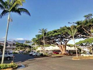 Beautiful North Shore Oahu - 1Br/1Ba - Partial Ocean View
