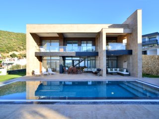 Luxury Contemporary Villa Esinti